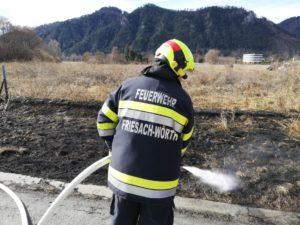 Wiesenbrand_A9_260218